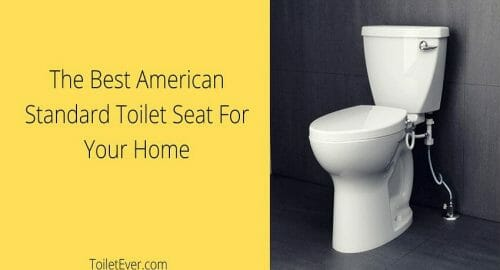 American Standard Toilet Seat