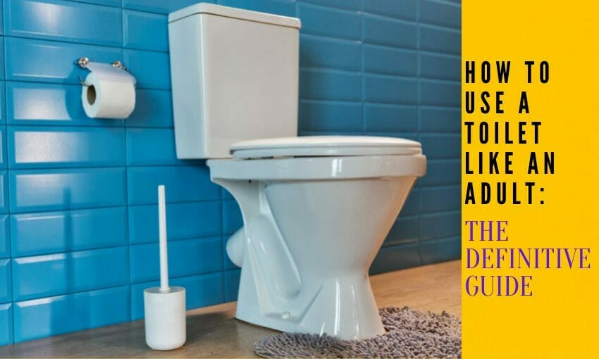 How to Use a Toilet Like an Adult