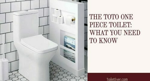The Toto One Piece Toilet