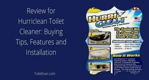 Hurriclean Toilet Cleaner