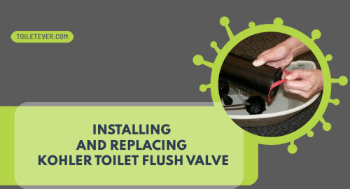 Kohler Toilet Flush Valve