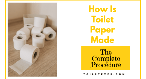 How Is Toilet Paper Made