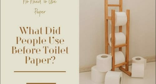 What Did People Use Before Toilet Paper